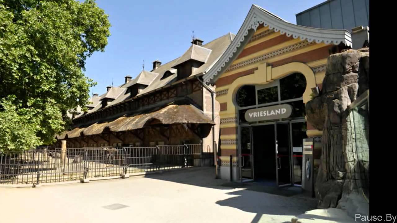 zoopark_belgiya
