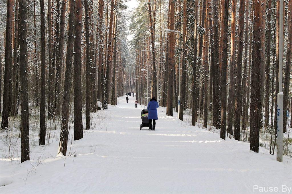 Пункт проката лыж в Дражне.jpg