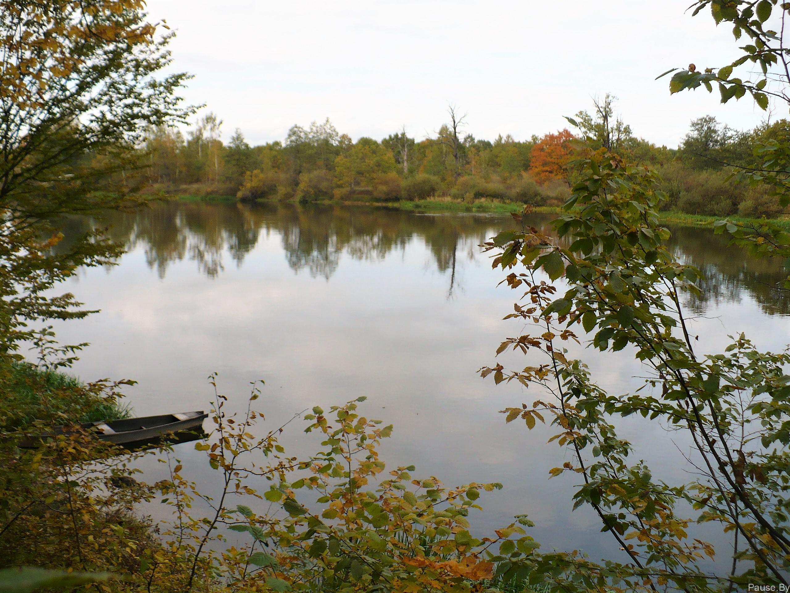 река Березина осенью