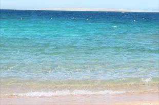 Красное море в Египте.jpg