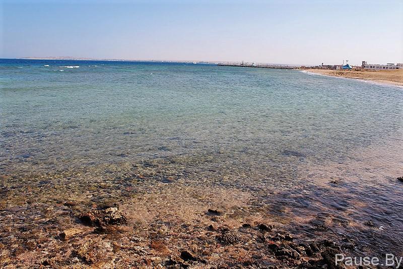 Один из лучших пляжей Хургады находится в отеле Меркурий .вулканическая плита на второй части пляжа.jpg