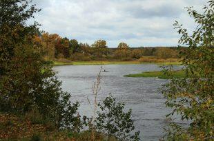 Деревья и кусты на берегах реки.jpg