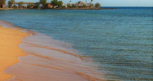 Как увидеть приливы и отливы на Красном мореюозп