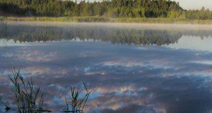 Отражение облаков и леса в озере.jpg